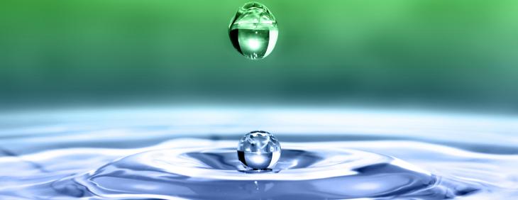 Wpływ działania mikroelementów na organizm człowieka