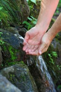 źródło wody